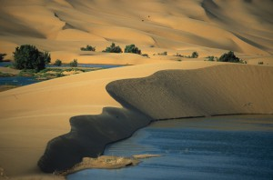 Laayoune_Oasis,_Марокко